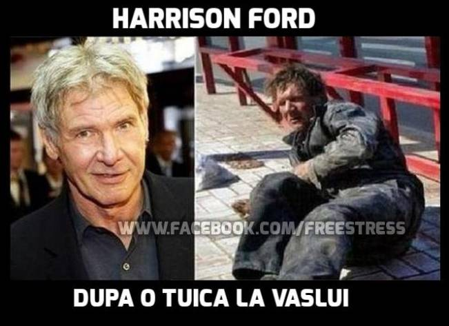 Harrison Ford la Vaslui County